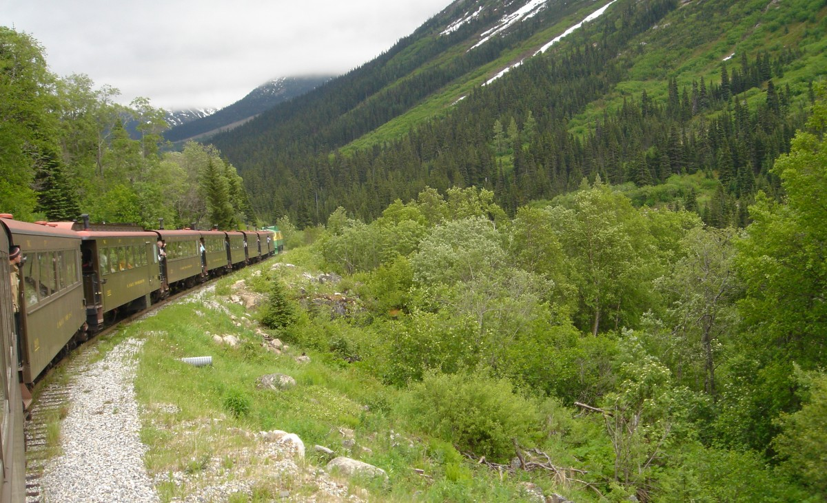 Train ride through Alaskan interior, taken by one of our Alaska experts on their trip.